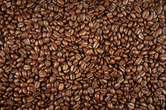 Free Coffee Beans Royalty Free Stock Image - 37763756