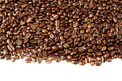 Coffee beans. Closeup of coffee beans on plain background. Copy space Royalty Free Stock Photo