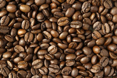 Free Coffee Beans Stock Images - 39083364