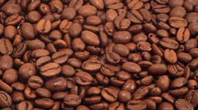Coffee beans. Cose up aromatic coffee beans Stock Images