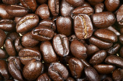 Coffee beans. Brown coffee beans. Close up Stock Images