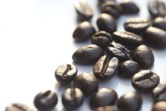 Free Coffee Beans 5 Royalty Free Stock Photography - 3803597