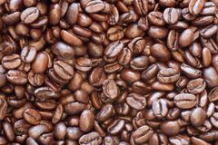 Coffee Beans. Roasted Coffee beans fill the screen royalty free stock photo