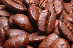 Coffee beans. Macro of roasted coffee beans Stock Photos