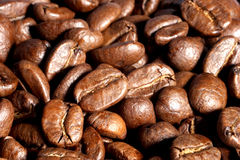 Coffee beans. Macro Stock Images