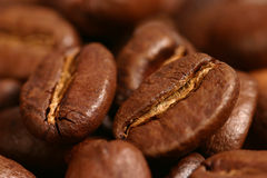Coffee beans. Close up of coffee beans Royalty Free Stock Images