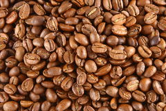 Coffee Beans. Background with many coffee beans royalty free stock photo
