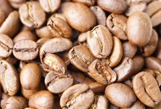 Coffee beans. Background of fresh roasted coffee beans Royalty Free Stock Photo