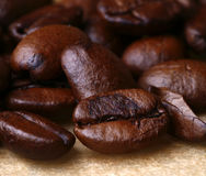 Coffee beans. Fresh roasted aroma coffee beans Royalty Free Stock Images