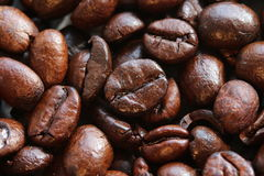 Free Coffee Beans Stock Photography - 58264352