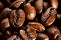 Coffee Beans. A macro closeup of freshly roasted coffee beans Royalty Free Stock Photo