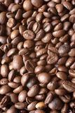 Coffee beans. Background stock image