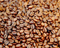 Coffee Beans. This is a full screen image of fresh roasted coffee beans Stock Photography