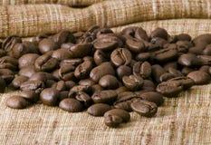 Free Coffee Beans Stock Photo - 6420980