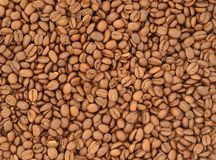 Coffee Beans. Lots of Natural Roasted Coffee Beans Background Royalty Free Stock Photography