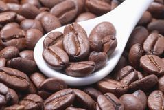 Coffee beans. In the white teaspoon Royalty Free Stock Photos