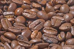 Coffee beans. As abstract background Royalty Free Stock Photos