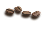 Coffee beans. Isolated with shadows Royalty Free Stock Images