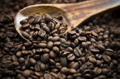 Coffee Beans. Spilling from a wooden spoon Royalty Free Stock Image