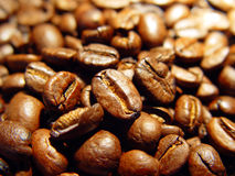 Free Coffee Beans Royalty Free Stock Photography - 756527