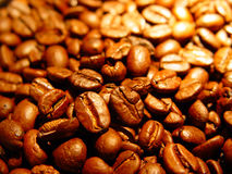 Free Coffee Beans Stock Photos - 756543