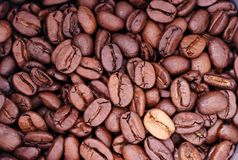 Coffee Beans. Background Stock Images