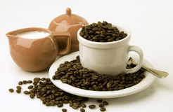 Free Coffee Beans Royalty Free Stock Images - 8333829