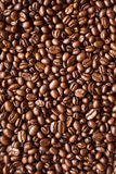 Coffee beans. Background, pattern, texture Royalty Free Stock Photography