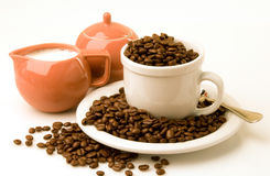 Free Coffee Beans Royalty Free Stock Image - 9007596
