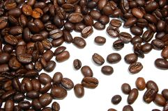 Coffee beans. A shot of Brown coffee beans on white background Stock Images