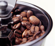Coffee beans. Photo of Coffee Beans : Thailand Stock Images