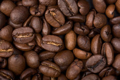 Coffee beans. Just coffee beans without anything else Stock Photo