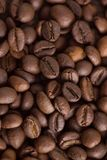 Coffee beans. Abstract background Stock Images