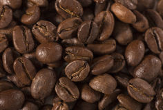 Coffee beans abstract background Royalty Free Stock Images