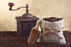 Coffee beans abundance Stock Image