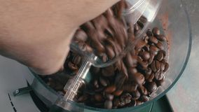 Coffee Beans Added to the Grinder stock footage
