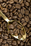 Coffee Beans And Golden Spoon Stock Photo