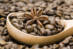 Coffee beans and anise. Close up of coffee beans and anise Royalty Free Stock Images