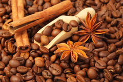Coffee beans, anise and vanilla Stock Photo
