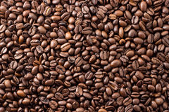 Coffee beans Arabica wallpaper. And texture royalty free stock photography