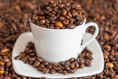 Coffee beans in and around a cup stock images