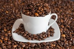 Coffee beans in and around a cup stock photography