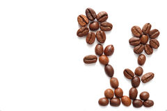 Coffee beans arranged two flowers Royalty Free Stock Photos