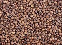 Coffee beans as a background. Many Coffee beans as a background royalty free stock image