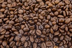 Coffee beans as background royalty free stock photo