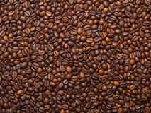 Coffee beans as food background Royalty Free Stock Images