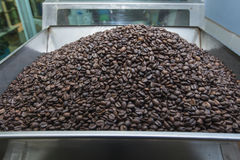 Coffee beans. Automated coffee beans factory, Coffee roasting machine Royalty Free Stock Images