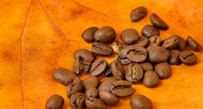 Coffee beans on autumn leaves Royalty Free Stock Photography