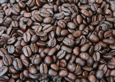 Coffee Beans Background royalty free stock photo