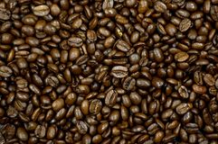 Coffee Beans Background. Brown Coffee Beans Background Texture Royalty Free Stock Photos